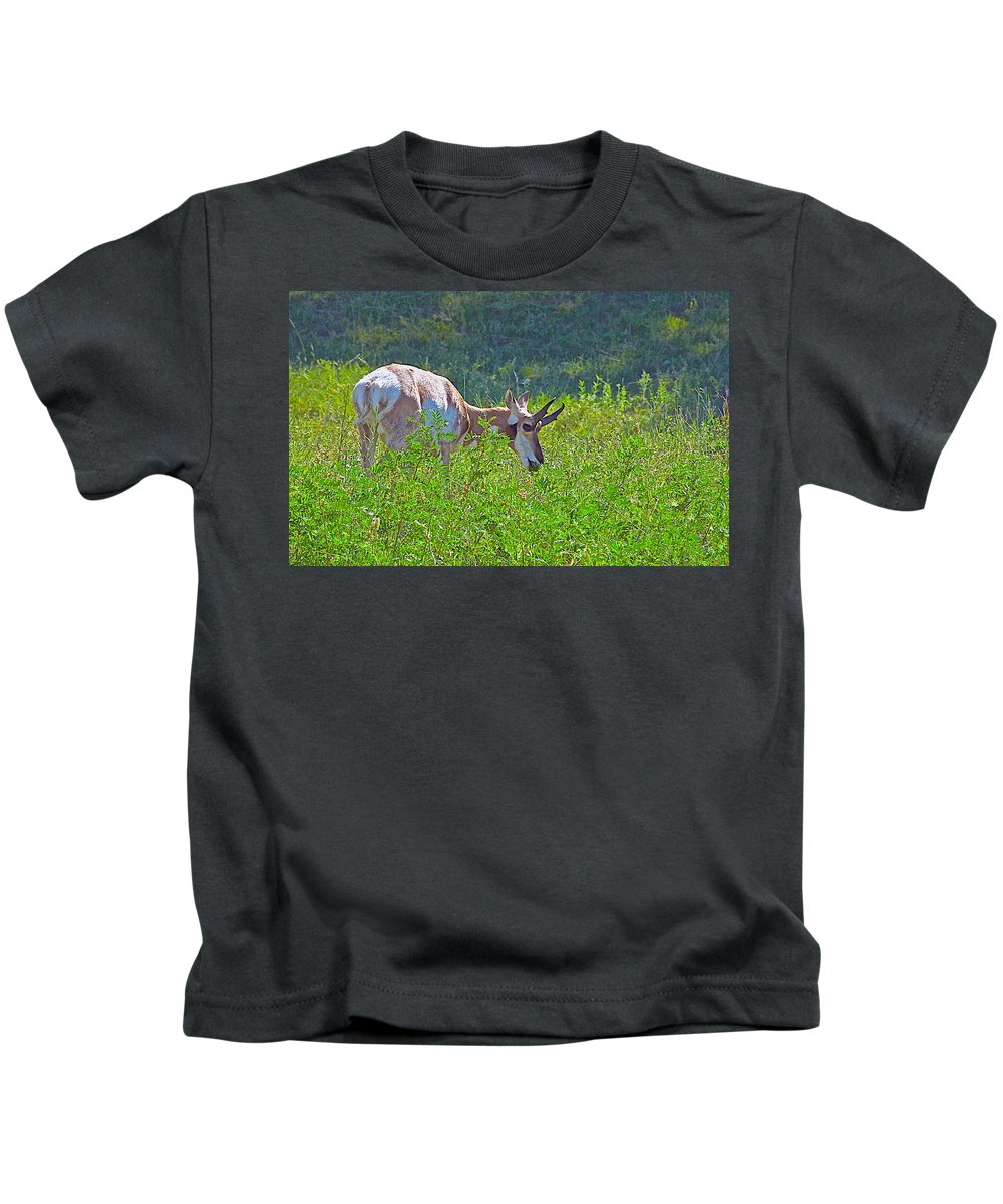 Antelope Near Wildlife Loop Road In Custer State Park Kids T-Shirt featuring the photograph Antelope Near Wildlife Loop Road In Custer State Park-south Dakota- by Ruth Hager