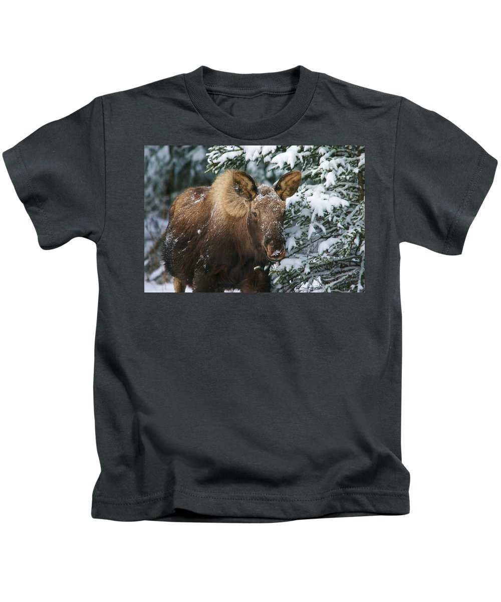 Moose Kids T-Shirt featuring the photograph Baby Blue Eyes by Karen Jones