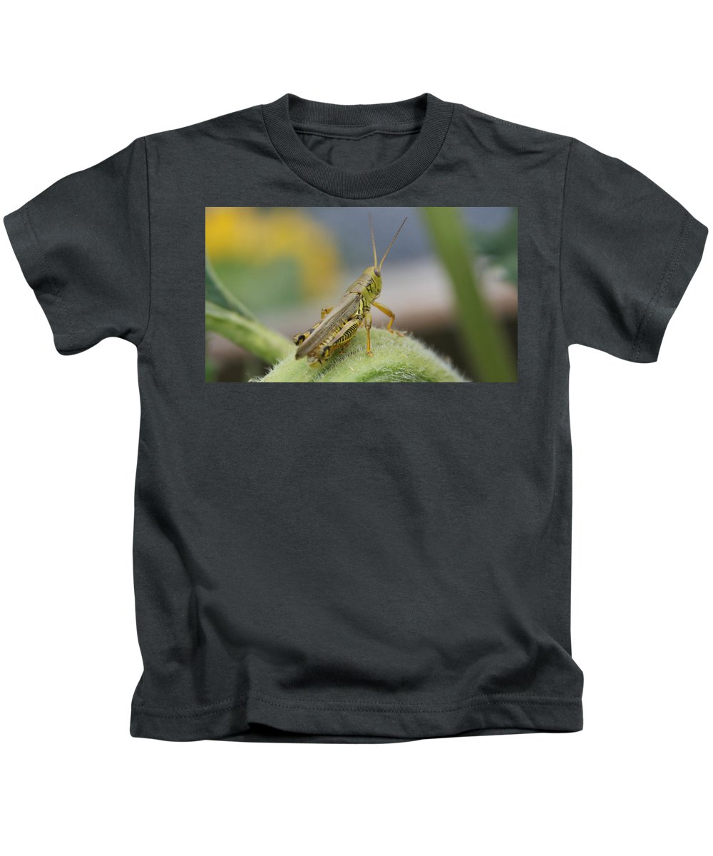 Green Kids T-Shirt featuring the photograph Back Side View Of Green Grasshopper....  # by Rob Luzier