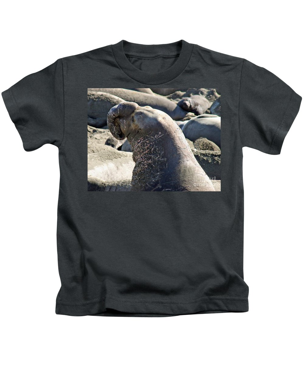 Elephant Seal Kids T-Shirt featuring the photograph Bull Elephant Seal Battle Scars by Tap On Photo