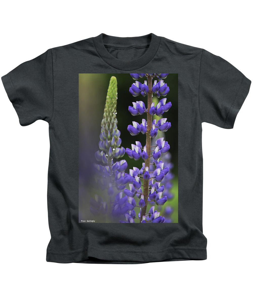 Lupine Kids T-Shirt featuring the photograph Blue And Gold by Fran Gallogly