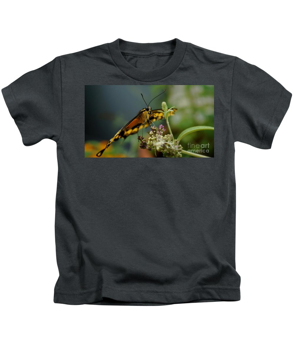 Animal Kids T-Shirt featuring the photograph Butterfly Kiss by Mickey At Rawshutterbug