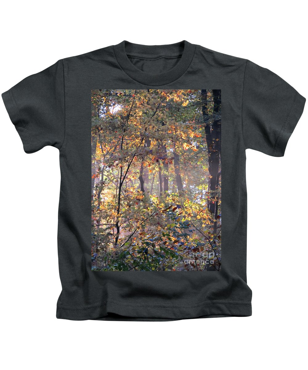 Forest Light Images Woodland Landscapes Forest Photography Images Misty Light Forest Glow Forest Sunrise Misty Morning Forest Canopy Collage Seasonal Forest Prints Nature Prints Nature Photography Autumn Leaves Golden Leaves Arborial Illumination Naturalist Natural Science Scenery Natural Light Forest Fog Fall Forest Indian Summer Prints Maryland Forest Outdoors Maryland Outdoor Recreation Environmental Education Oldgrowth Forest Biodiversity Preservation Wildlife Habitat Conservation Natural Kids T-Shirt featuring the photograph Canopy Collage by Joshua Bales