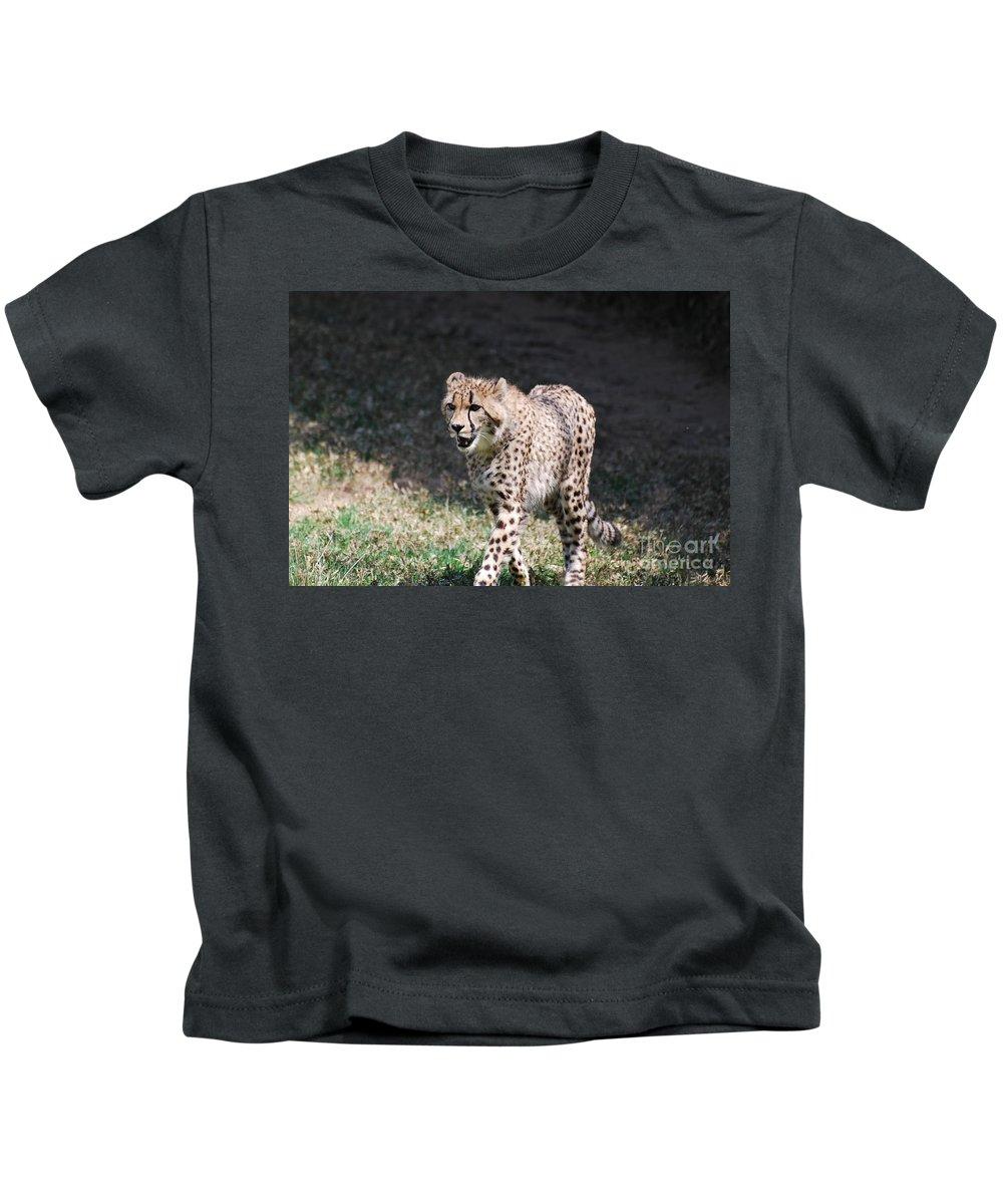 Cheetah Kids T-Shirt featuring the photograph Cheetah Strutting by DejaVu Designs