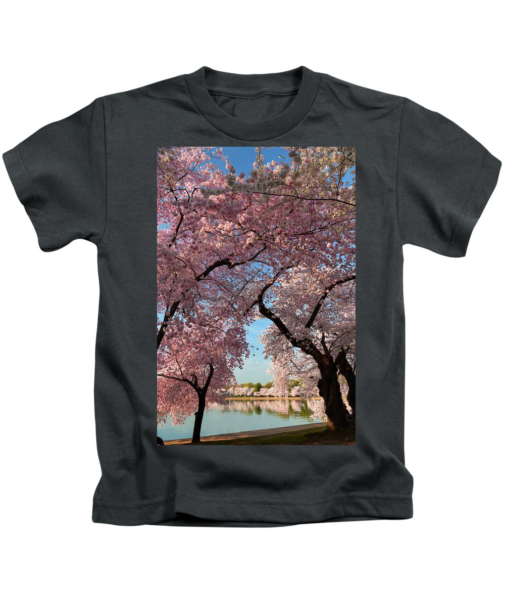 Architectural Kids T-Shirt featuring the photograph Cherry Blossoms 2013 - 024 by Metro DC Photography