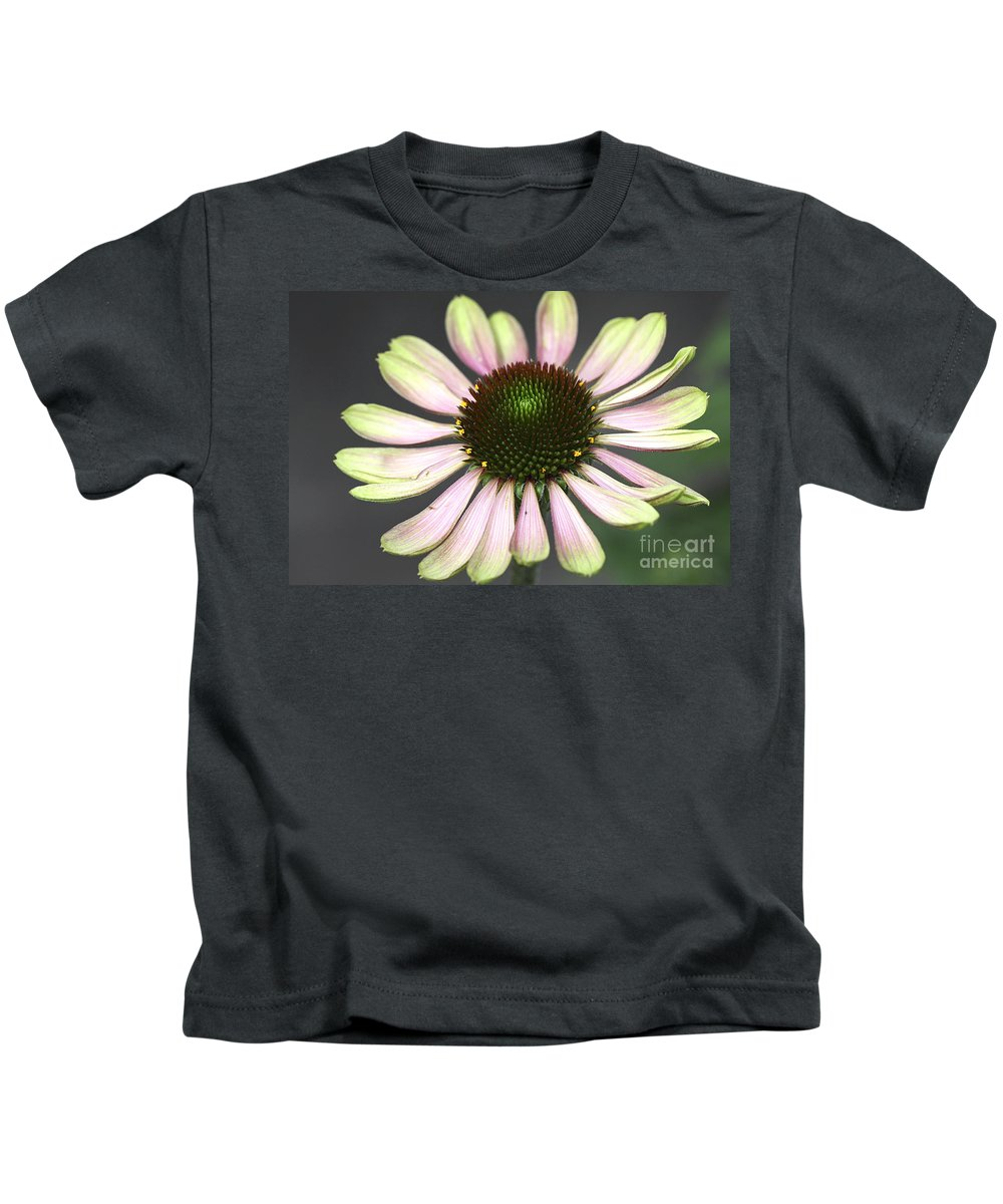 Flower Kids T-Shirt featuring the photograph Cone Display by Deborah Benoit