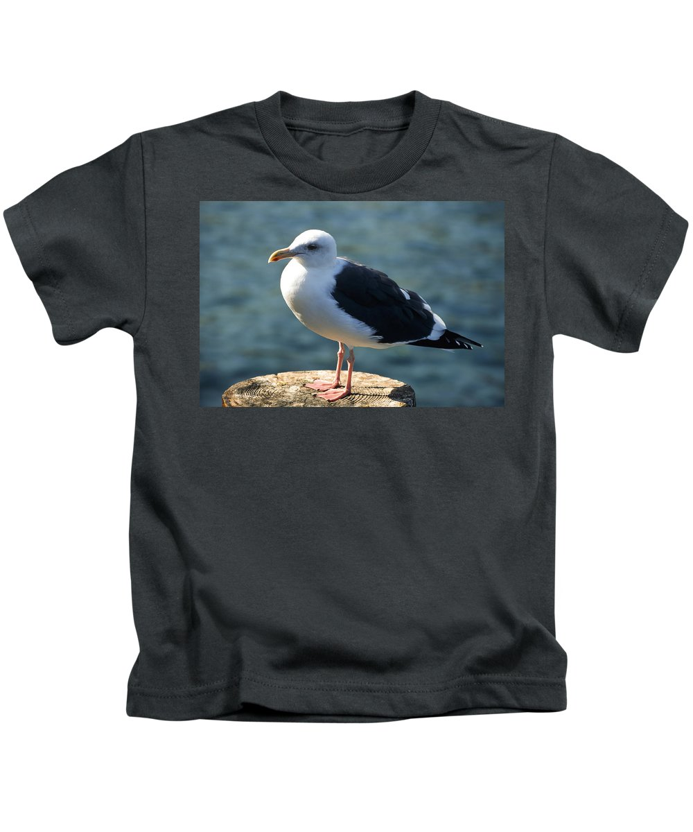 Americas Kids T-Shirt featuring the photograph Contemplating Life Of A Sea Gull by Roderick Bley