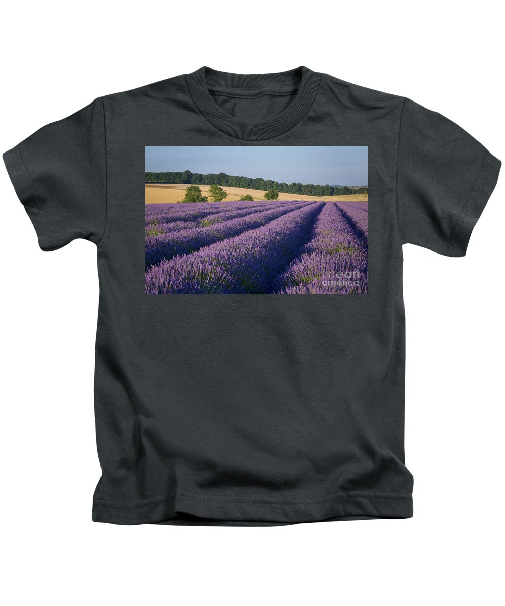 Cotswolds Kids T-Shirt featuring the photograph Cotswolds Lavender by Brian Jannsen