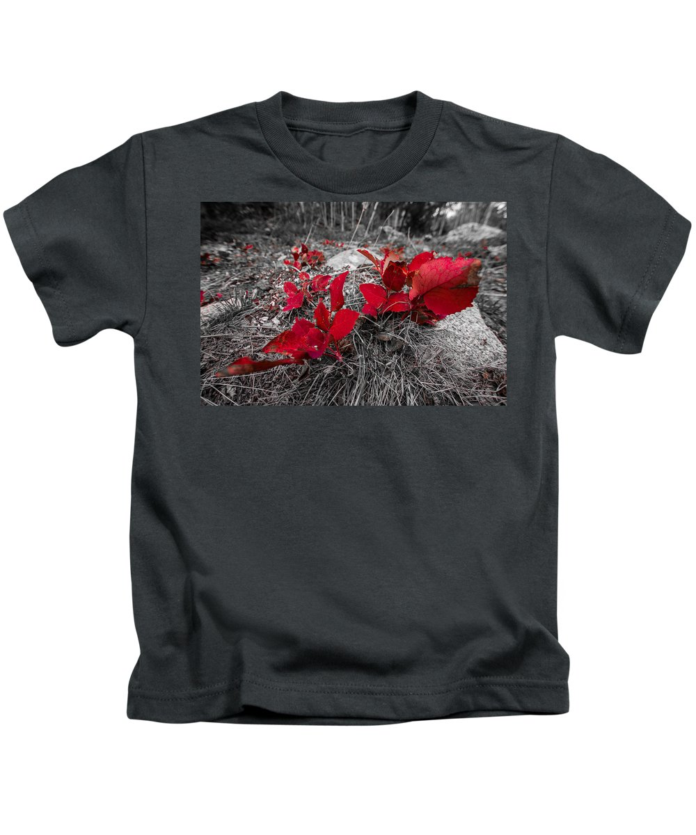 Foliage Kids T-Shirt featuring the photograph Crimson Foliage by Gina Herbert