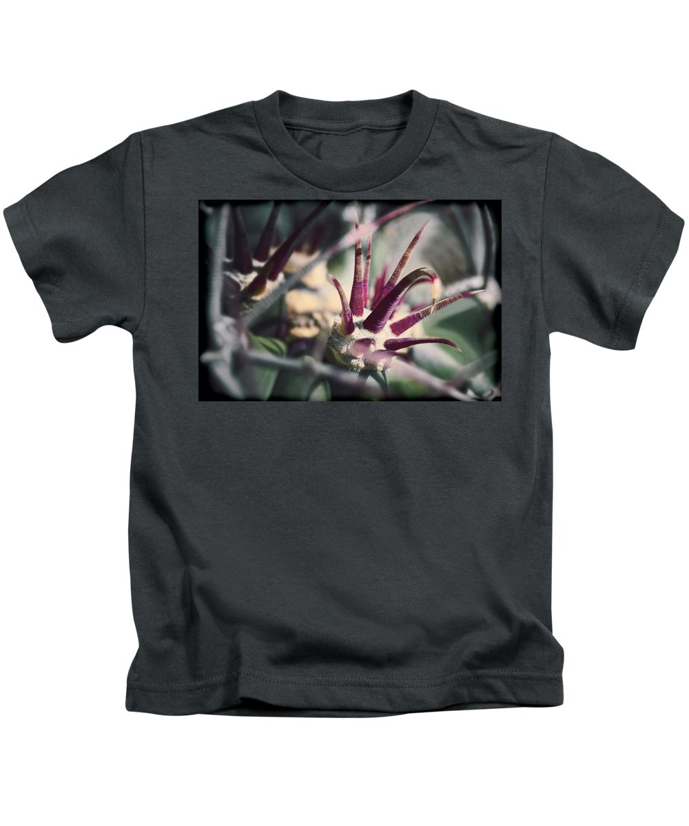 Cactus Kids T-Shirt featuring the photograph Crown Of Thorns by Kelley King