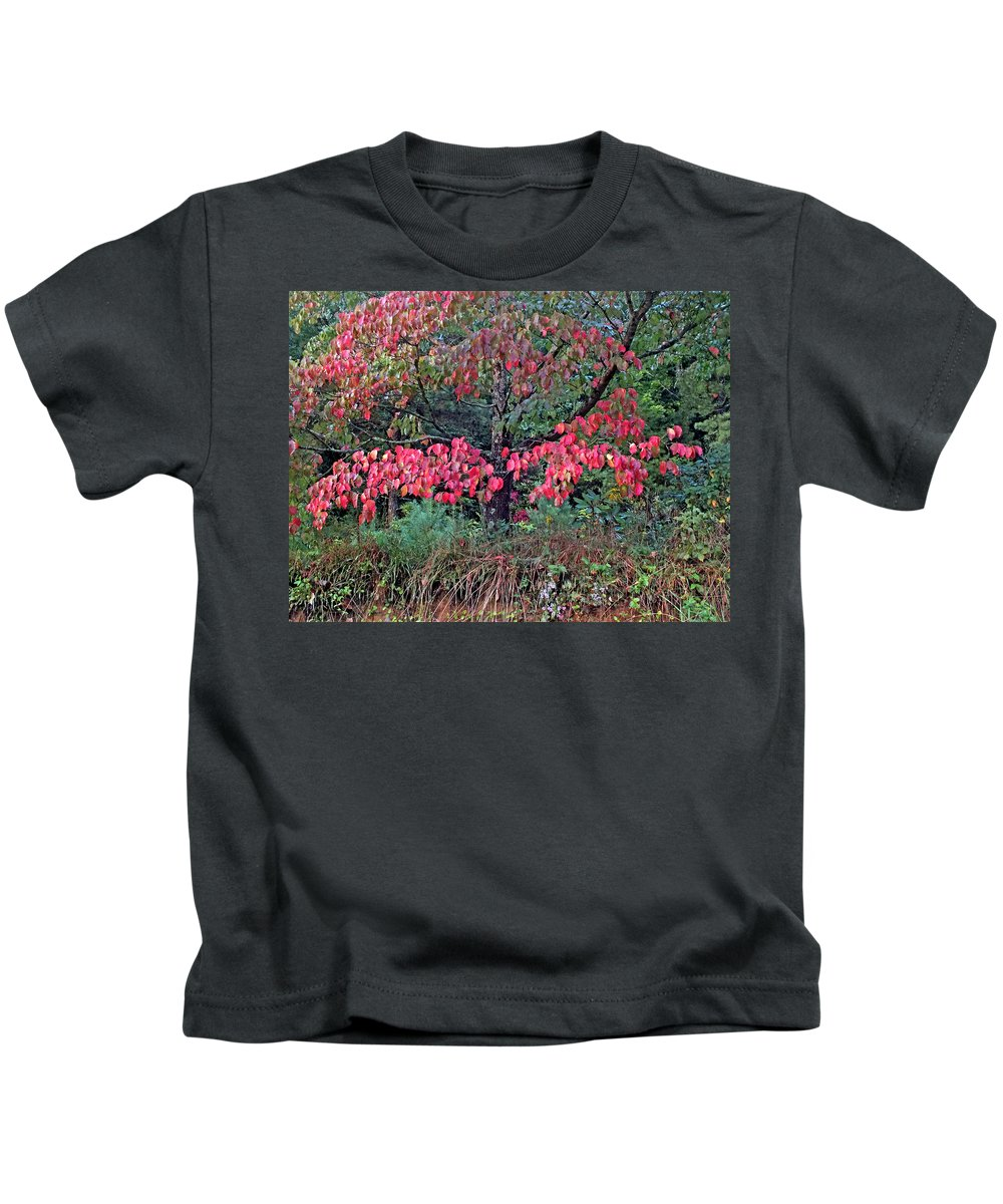 Duane Mccullough Kids T-Shirt featuring the photograph Dogwood Leaves In The Fall by Duane McCullough