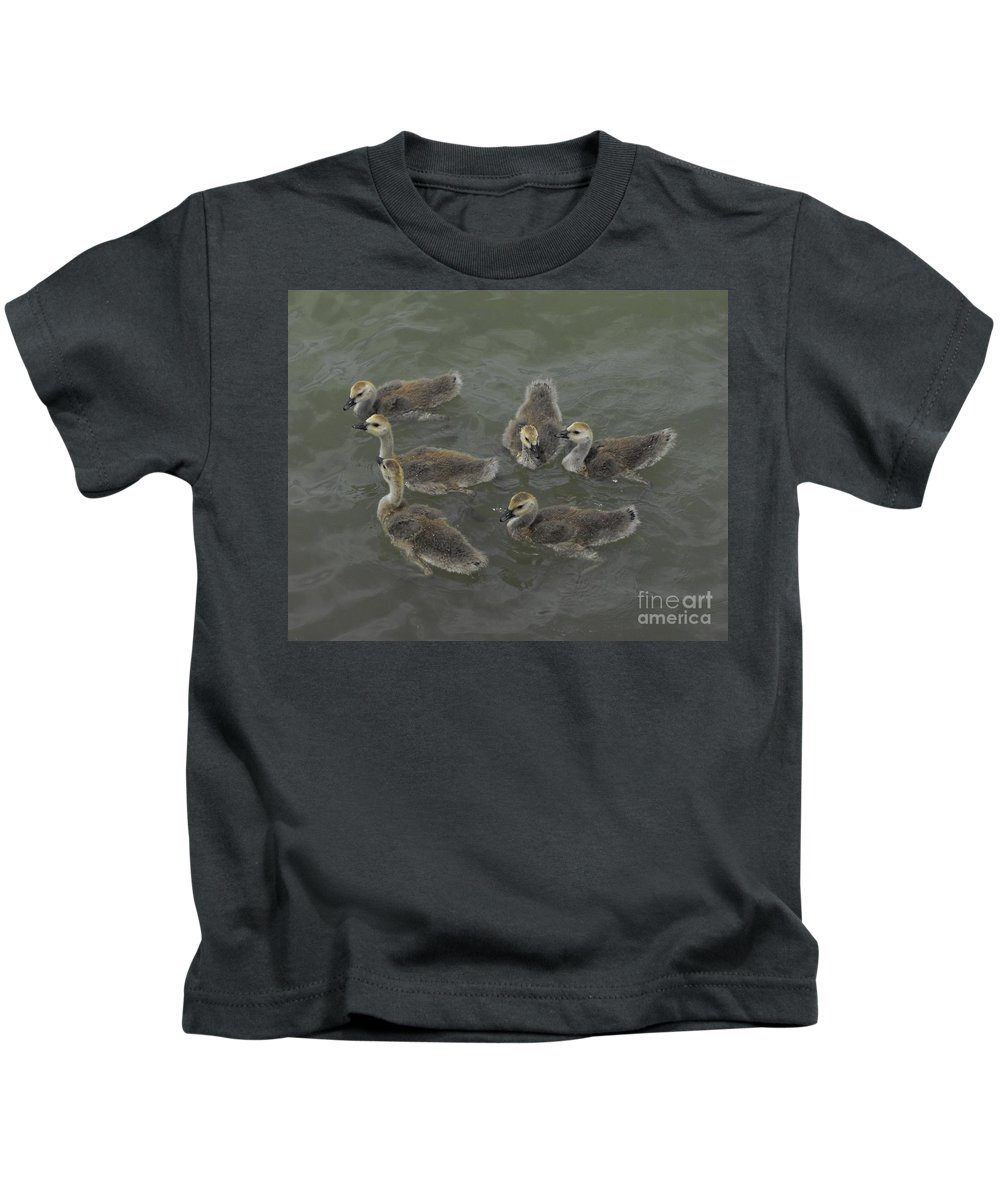 Ducks Kids T-Shirt featuring the photograph Ducklings by Brandi Maher
