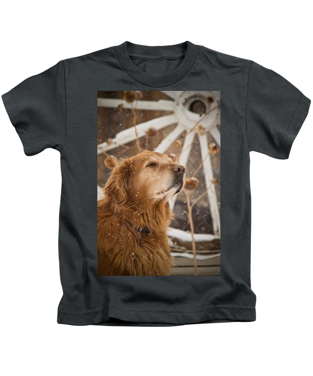 Golden Retriever Kids T-Shirt featuring the photograph Enjoying The Moment - Golden Retriever - Casper Wyoming by Diane Mintle