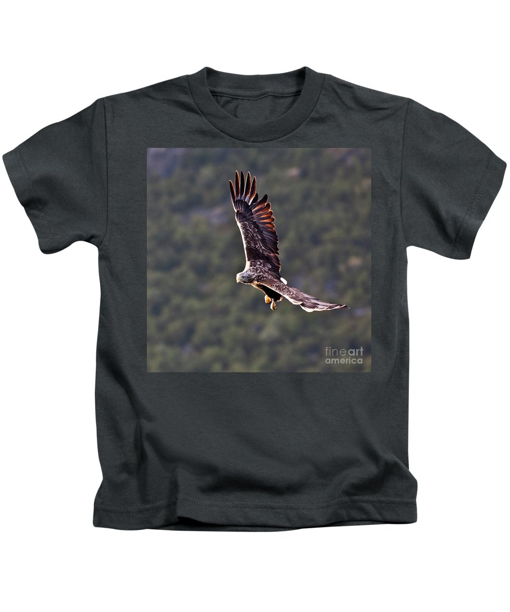 White_tailed Eagle Kids T-Shirt featuring the photograph European Flying Sea Eagle 4 by Heiko Koehrer-Wagner