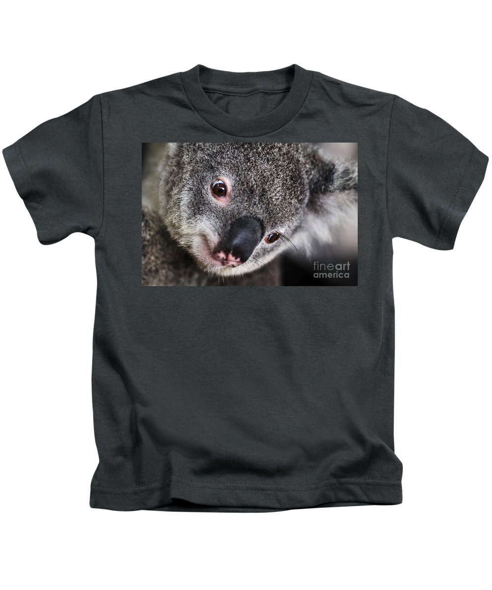 Photography Kids T-Shirt featuring the photograph Eye Am Watching You - Koala by Kaye Menner