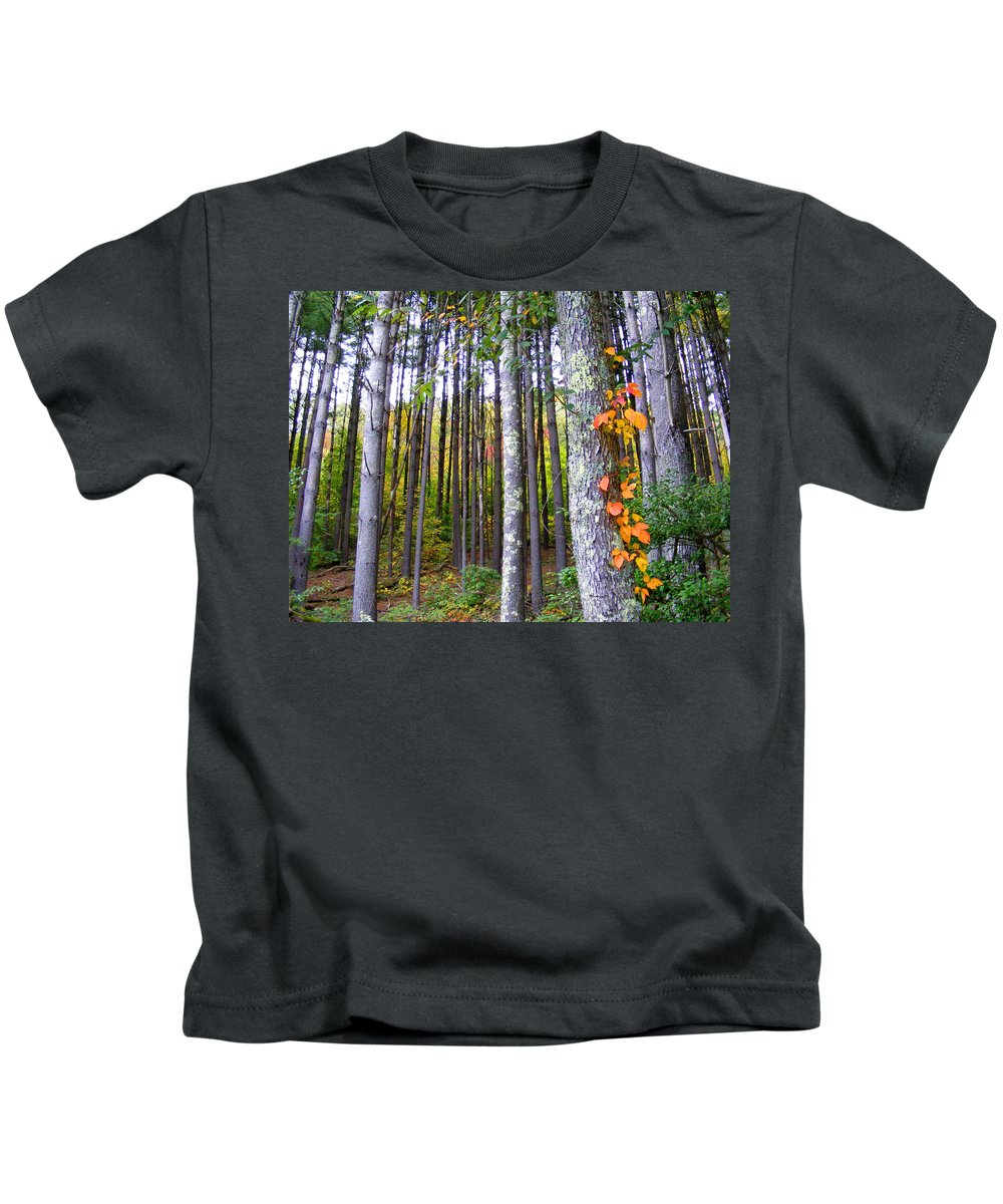 Plants Kids T-Shirt featuring the photograph Fall Ivy In Pine Tree Forest by Duane McCullough