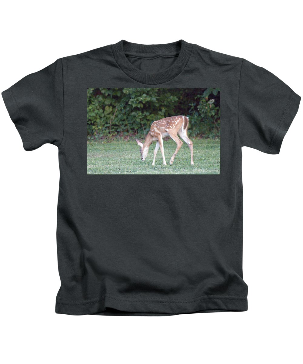 Deer Photographs Kids T-Shirt featuring the photograph Fawn Meadow by Vernis Maxwell