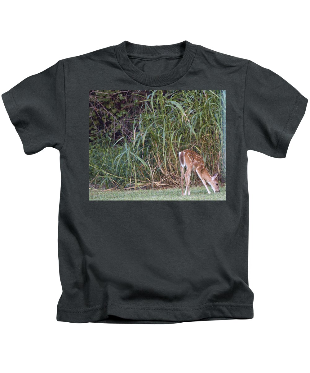 Deer Photographs Kids T-Shirt featuring the photograph Fawn Snacking by Vernis Maxwell