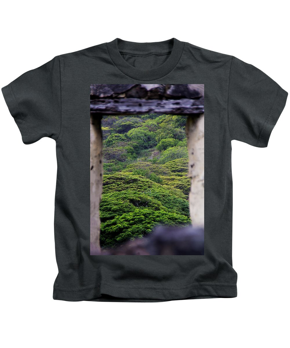 Trees Kids T-Shirt featuring the photograph Forest Canopy Through The Window Of The Ruins by Douglas Barnard