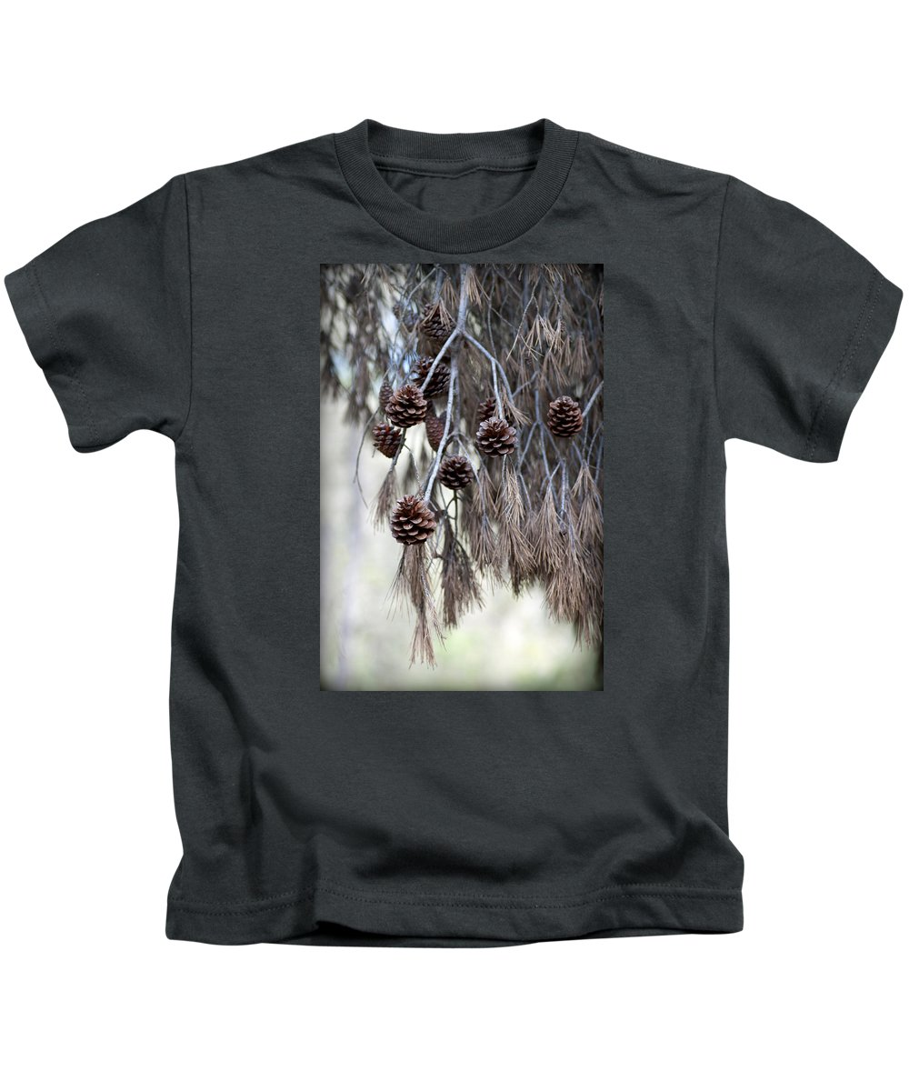 Menorca Kids T-Shirt featuring the photograph forest decoration - A pine tree give us a natural autumn decoration by Pedro Cardona Llambias