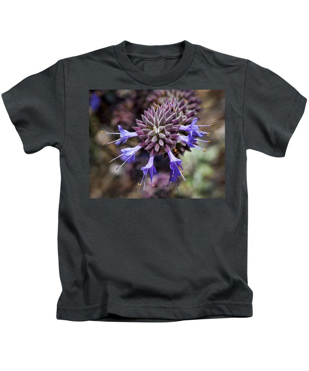 Lavender Flowers Kids T-Shirt featuring the photograph Fuzzy Purple 2 by Kelley King