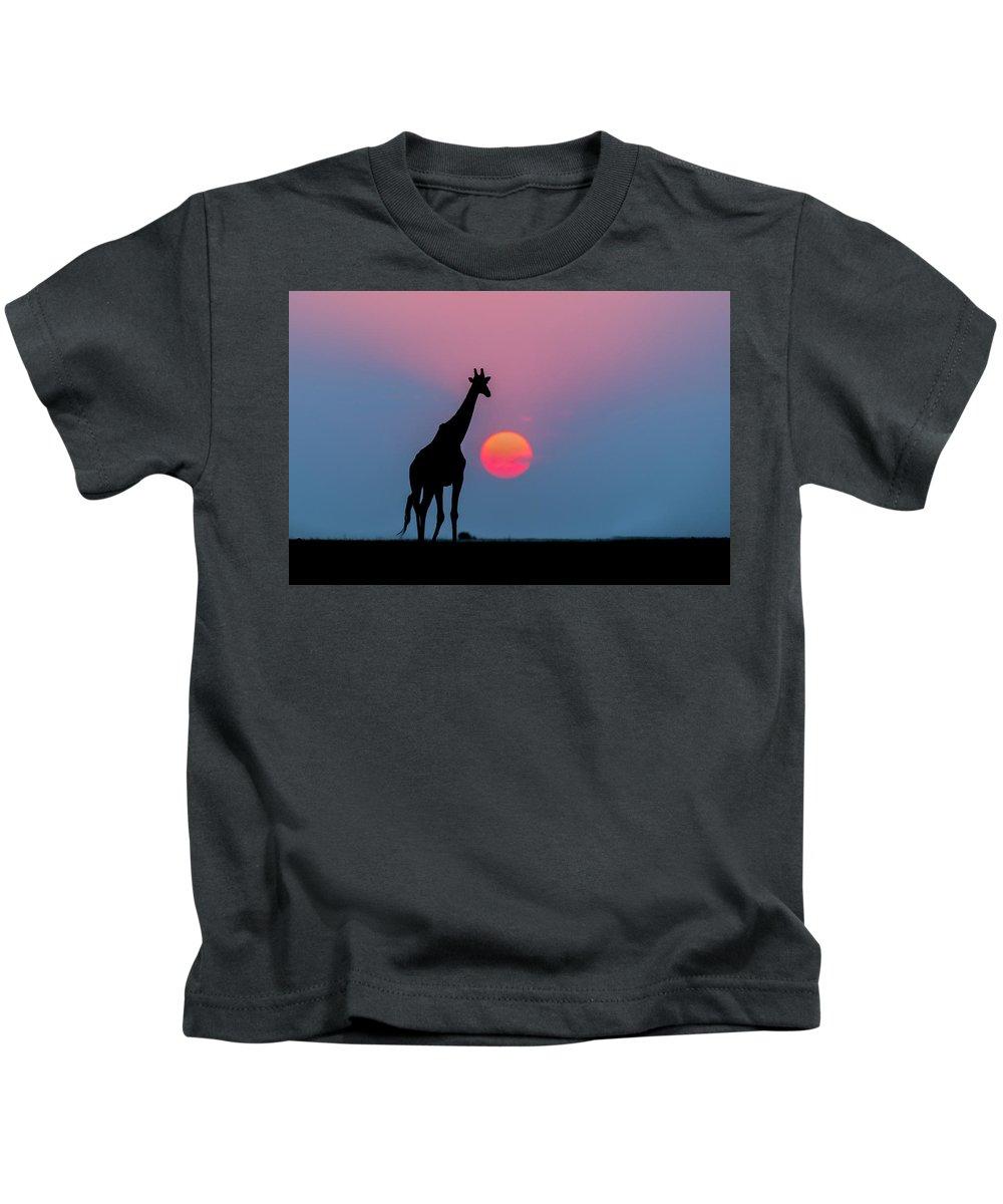Nis Kids T-Shirt featuring the photograph Giraffe At Sunset Chobe Np Botswana by Andrew Schoeman