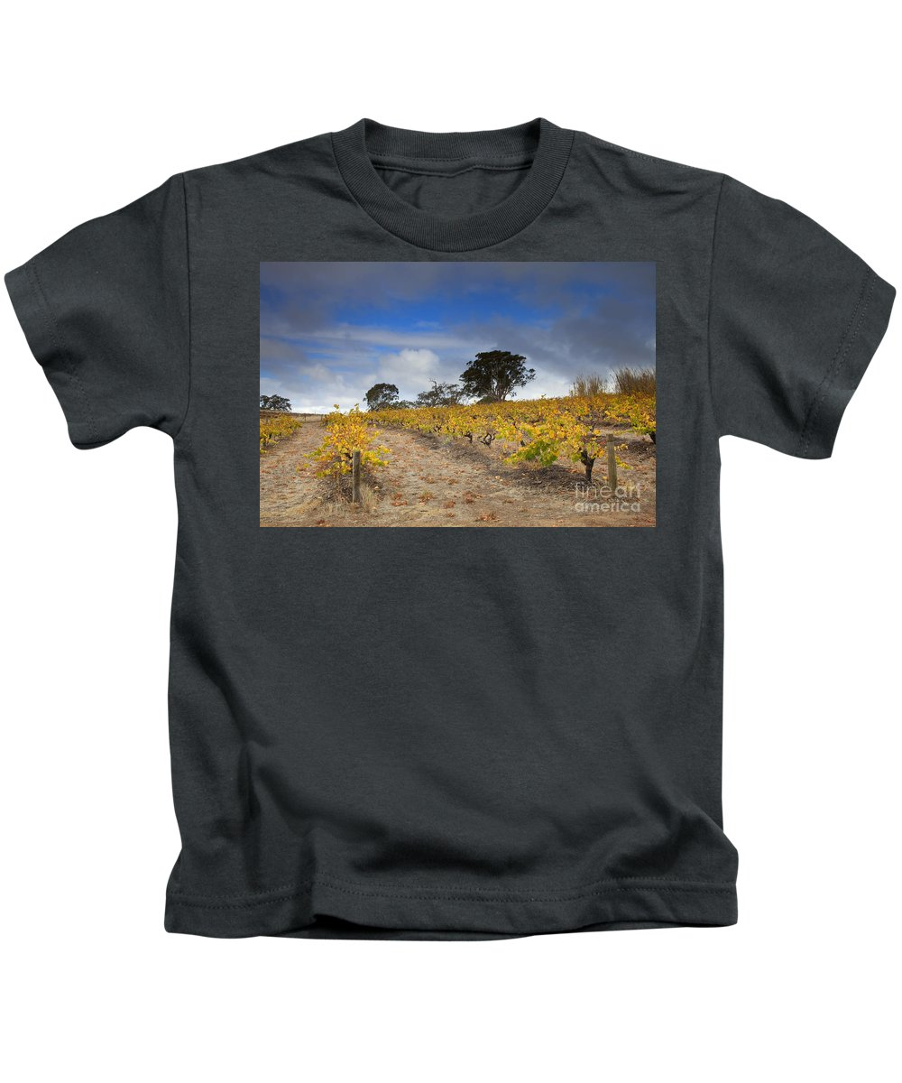 Golden Kids T-Shirt featuring the photograph Golden Vines by Mike Dawson