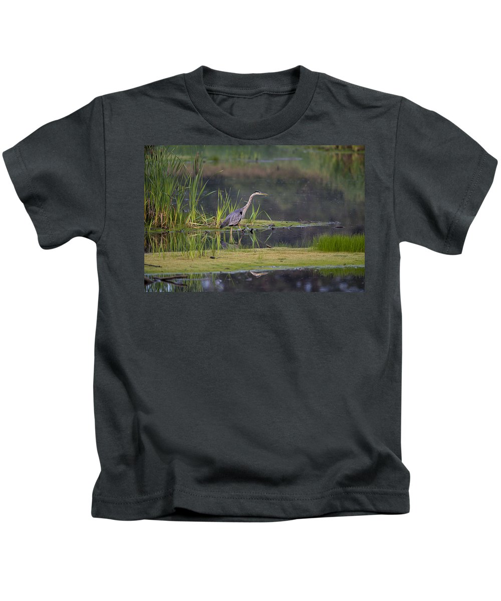 Great Blue Heron Kids T-Shirt featuring the photograph Great Blue Heron At Down East Maine Wetland by Marty Saccone