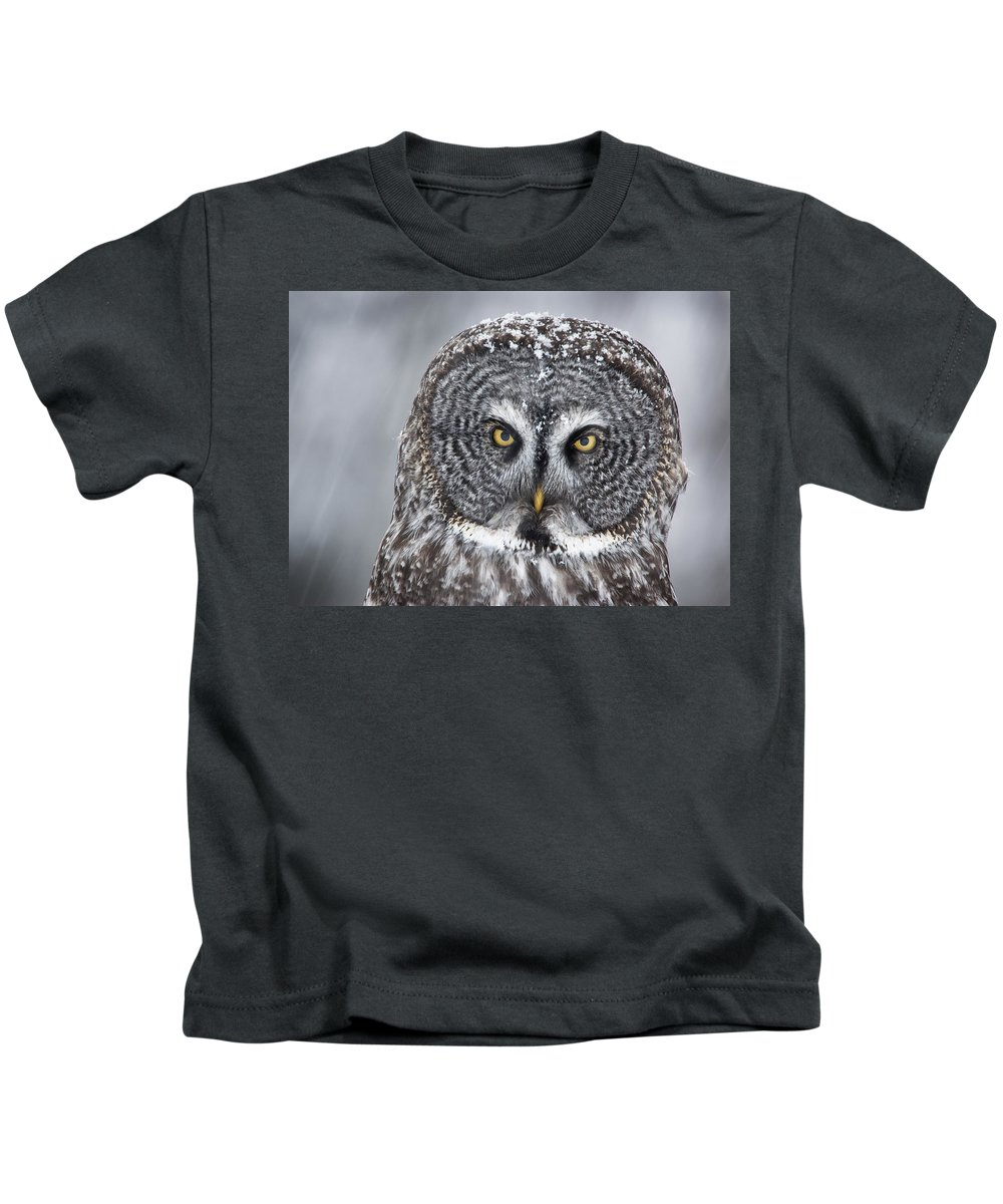 Nis Kids T-Shirt featuring the photograph Great Gray Owl Scowl Minnesota by Benjamin Olson