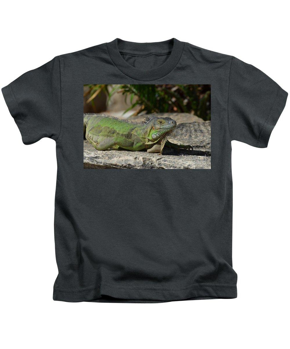 California Lighthouse Kids T-Shirt featuring the photograph Green Iguana Lizard by DejaVu Designs