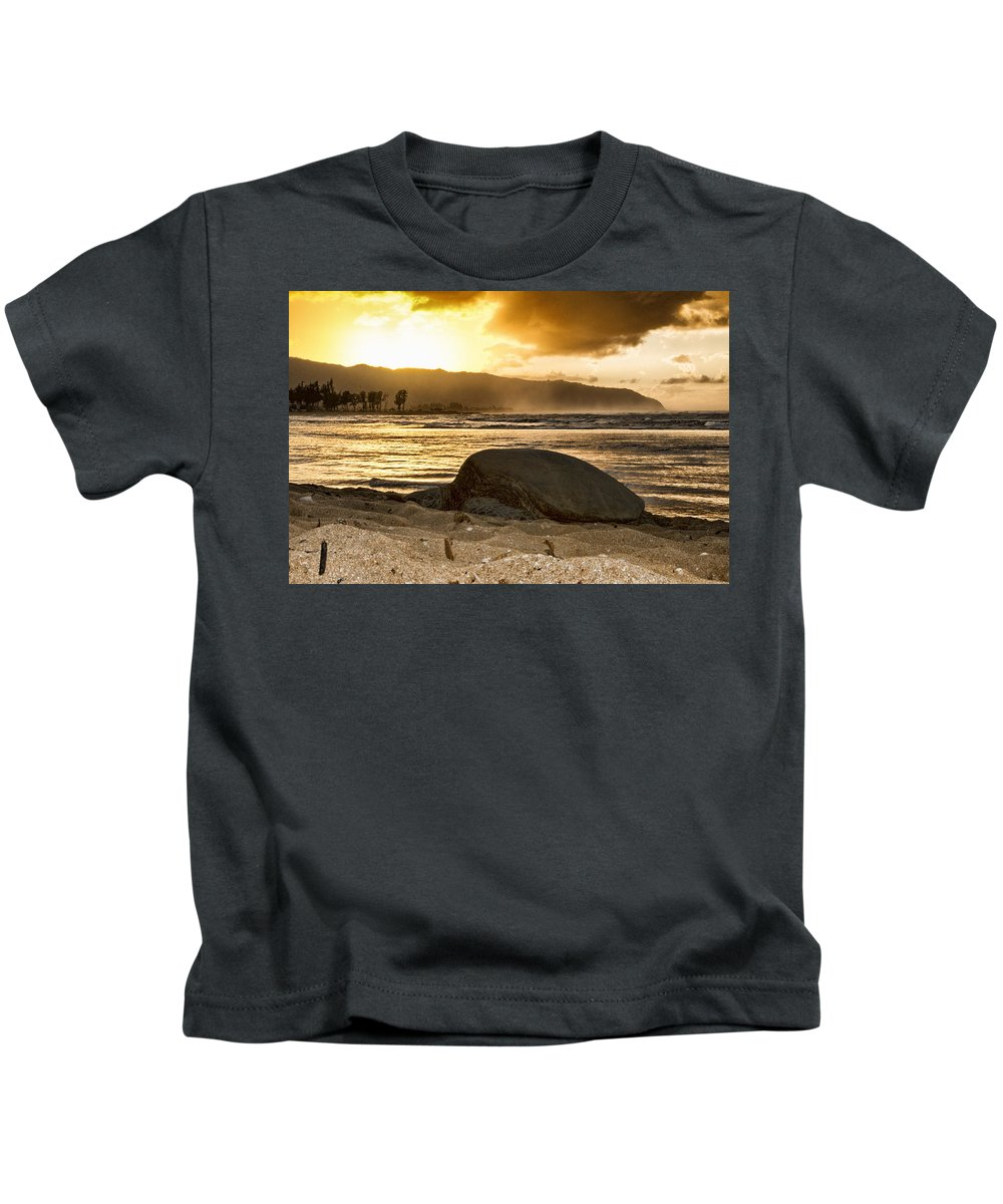Green Sea Turtle Kids T-Shirt featuring the photograph Green Sea Turtle At Sunset V2 by Douglas Barnard