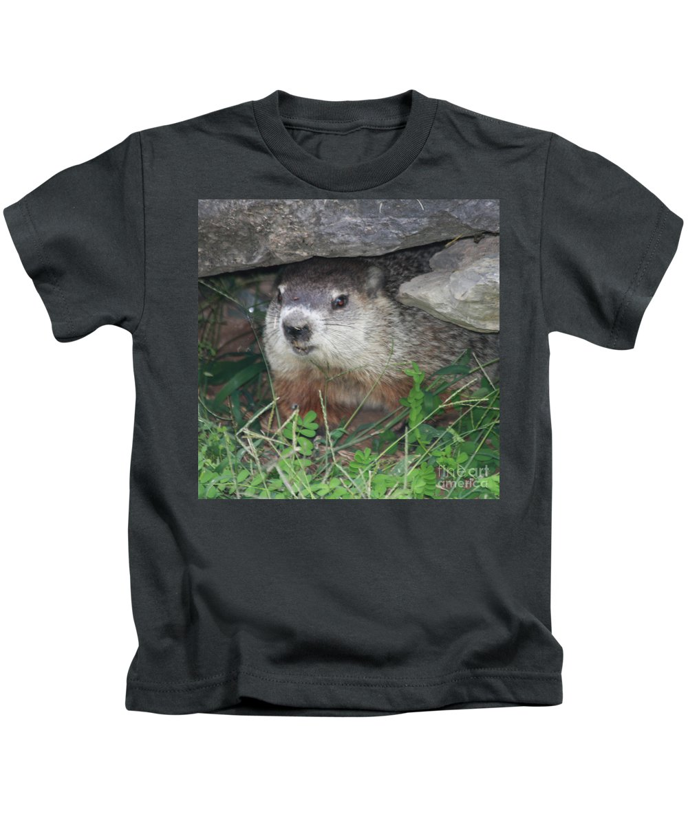 Groundhog Hiding In His Cave Kids T-Shirt featuring the photograph Groundhog Hiding In His Cave by John Telfer