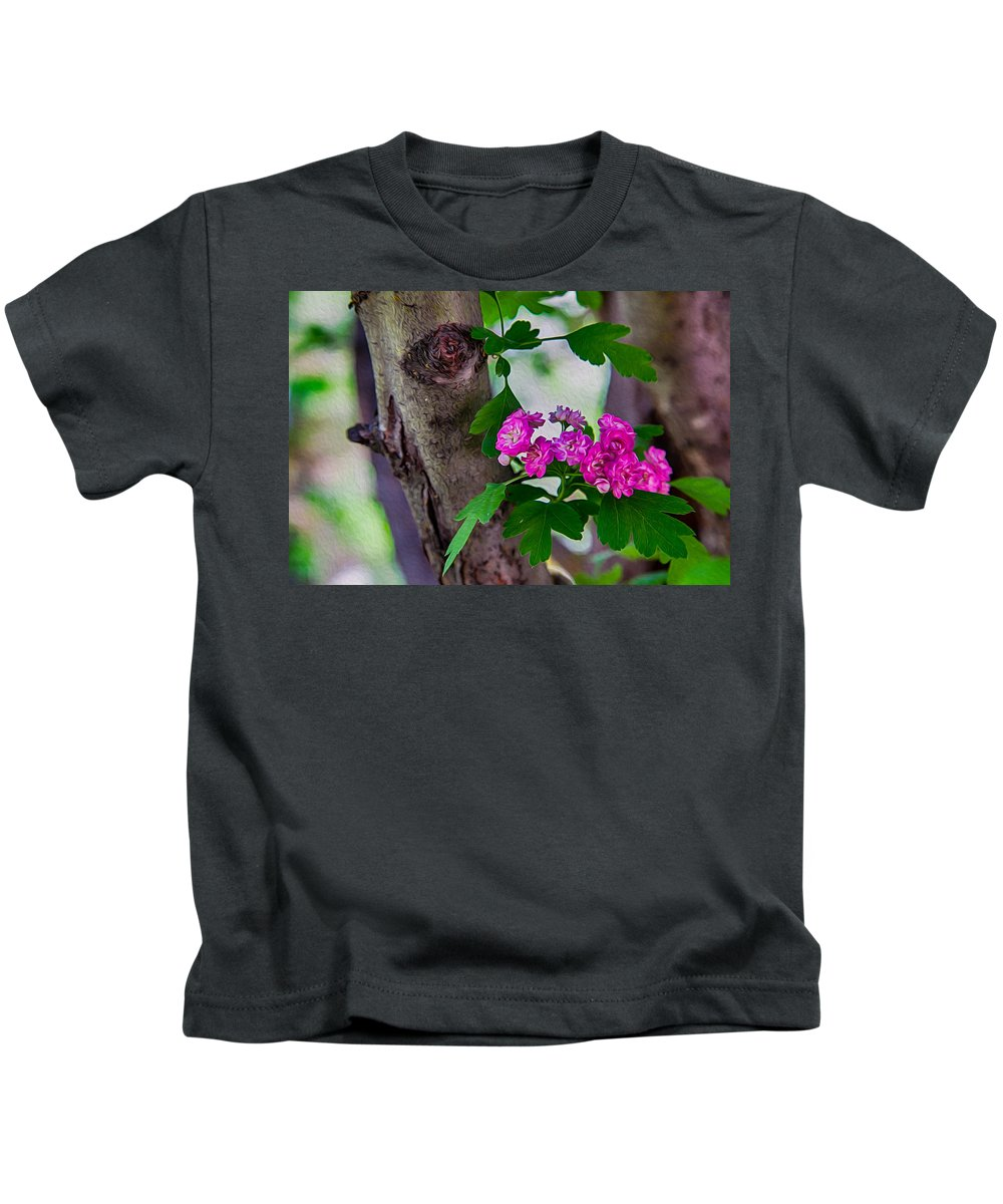 North Cascades Kids T-Shirt featuring the photograph Hawthorn Romance by Omaste Witkowski