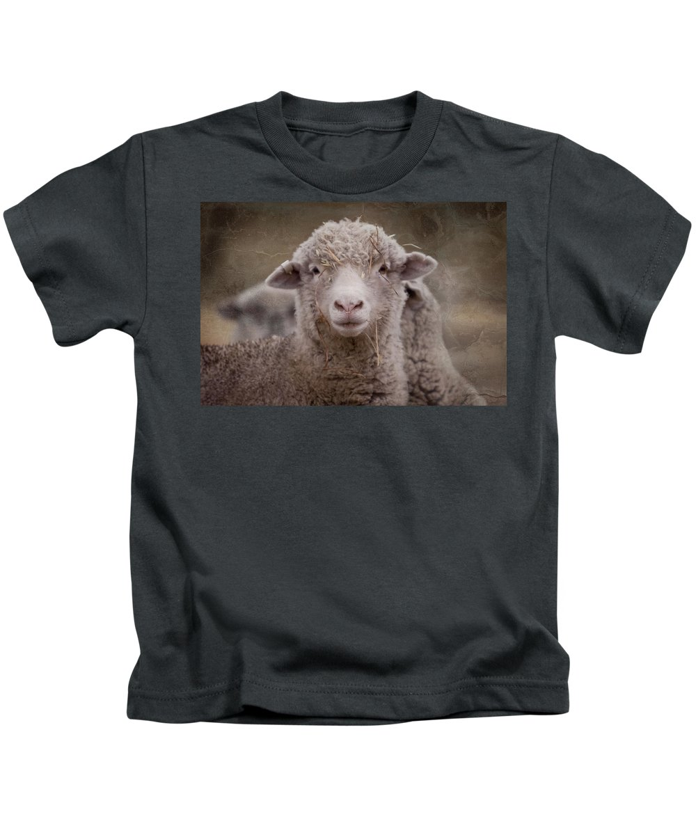 Sheep Kids T-Shirt featuring the photograph Hay Ewe by Michelle Wrighton