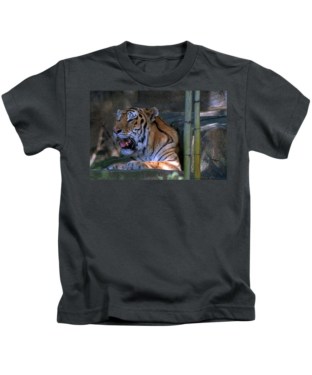 Nature Kids T-Shirt featuring the photograph Heavy Breathing by Skip Willits