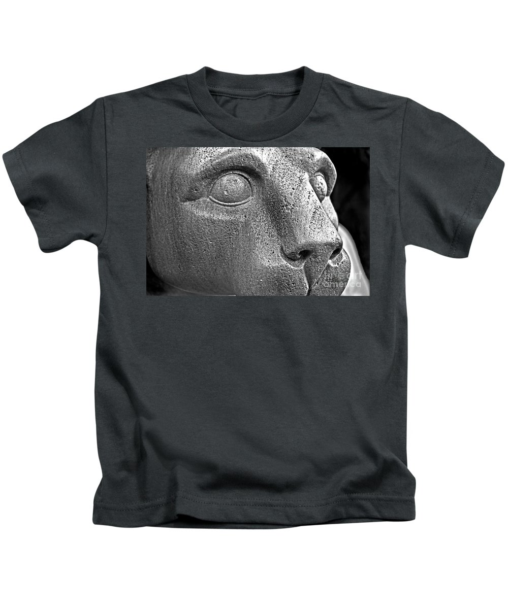 Sculpture Kids T-Shirt featuring the photograph Heinz Warneke's Mountain Lion by Tom Gari Gallery-Three-Photography