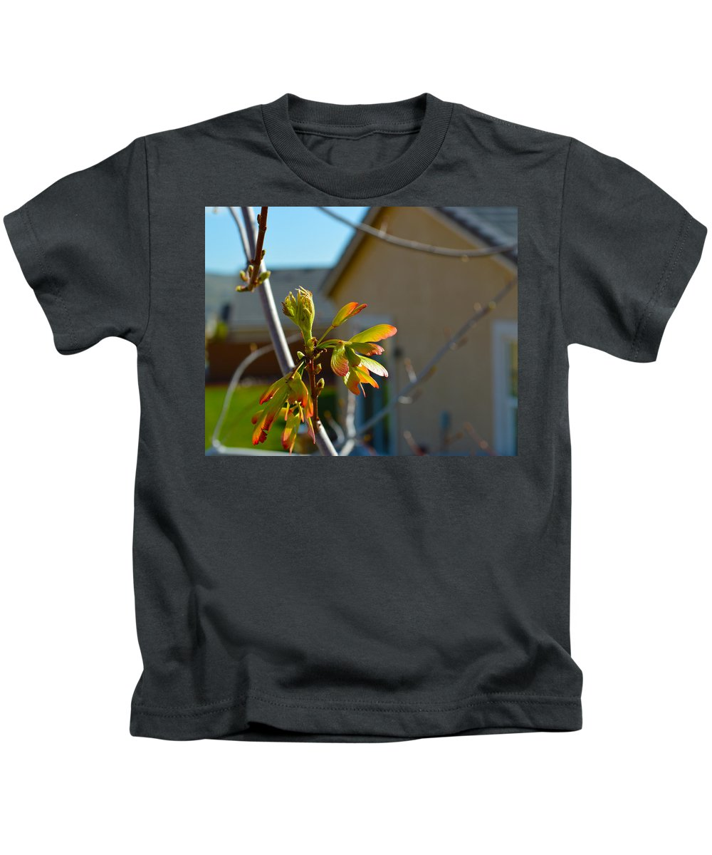 Seeds Kids T-Shirt featuring the photograph Helicopter Seeds 3 by Brent Dolliver