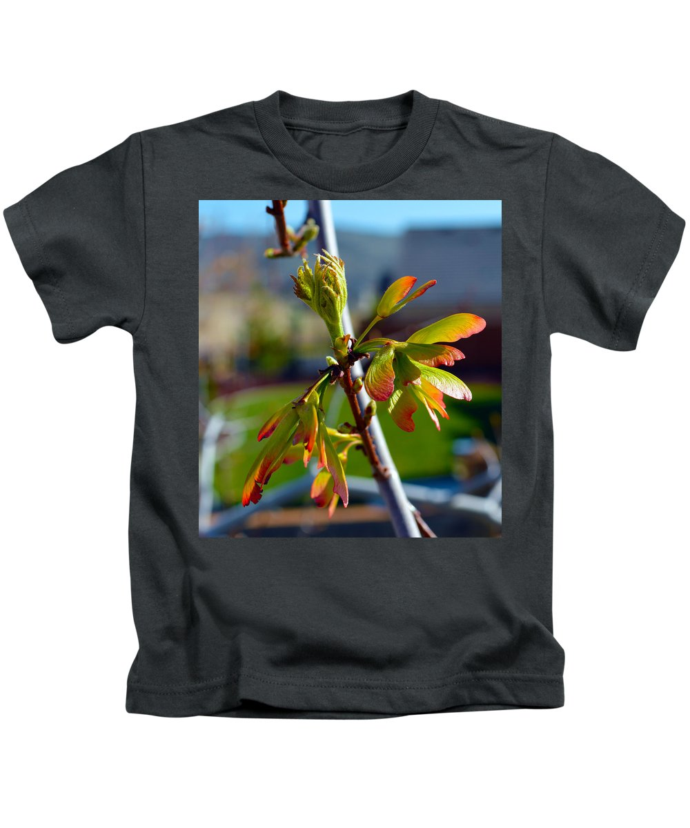 Seeds Kids T-Shirt featuring the photograph Helicopter Seeds by Brent Dolliver