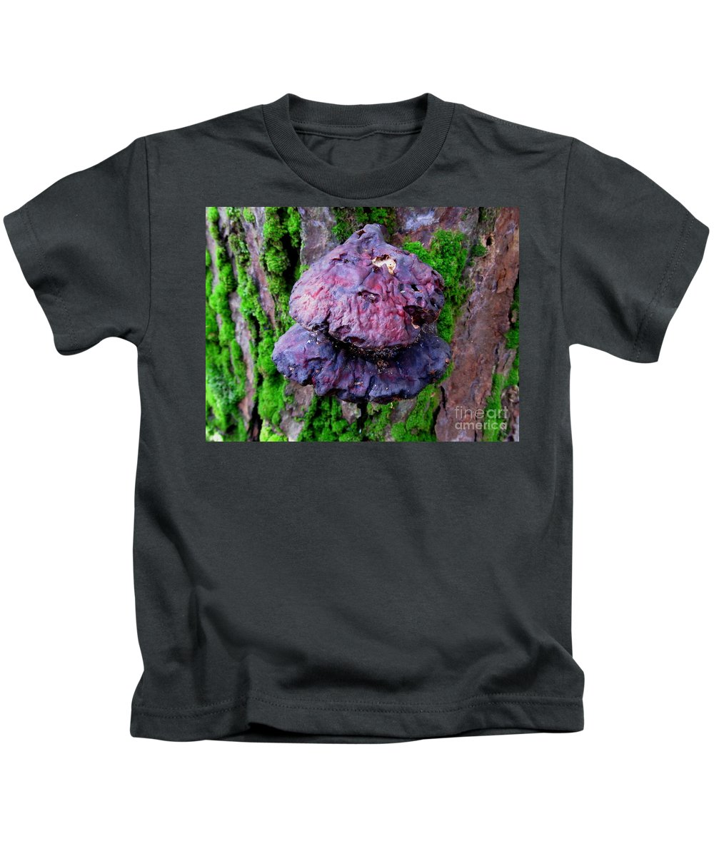 Hemlock Reishi Fungi Ganoderma Tsugue Hemlock Polypore North American Fungi Mid Atlantic Mushrooms Pennsylvania Polypores Purple Reishi Rare Fungi Medicinal Mushrooms Of Appalachia Kids T-Shirt featuring the photograph Hemlock Reishi by Joshua Bales