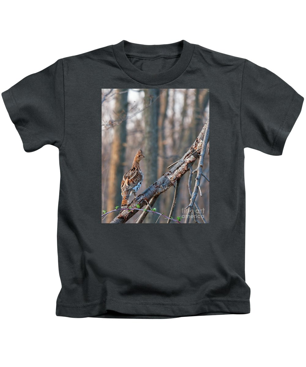 Grouse Kids T-Shirt featuring the photograph Hen Ruffed Grouse On Roost by Timothy Flanigan and Debbie Flanigan Nature Exposure