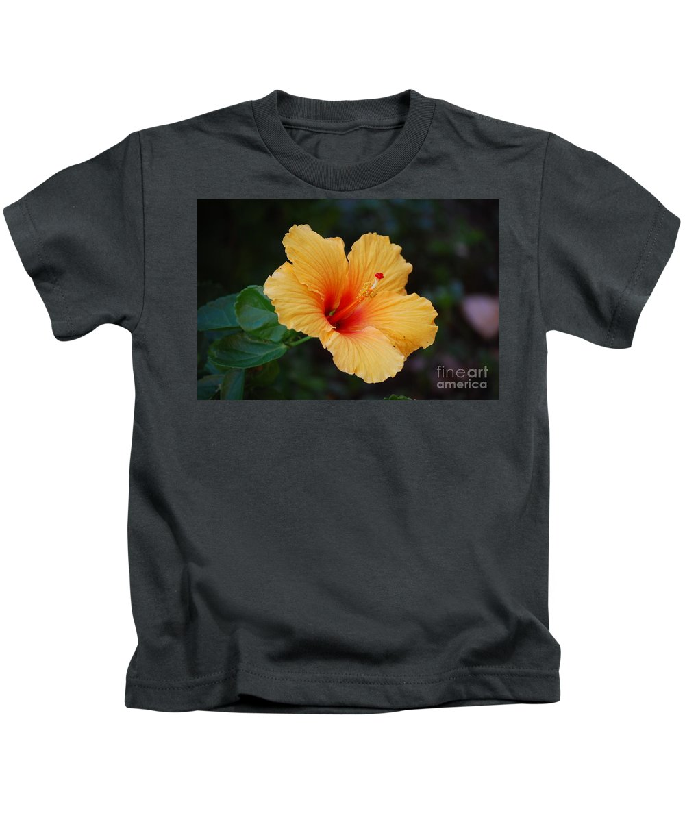 Hibiscus Kids T-Shirt featuring the photograph Hibiscus Flower In Puerto Rico by DejaVu Designs