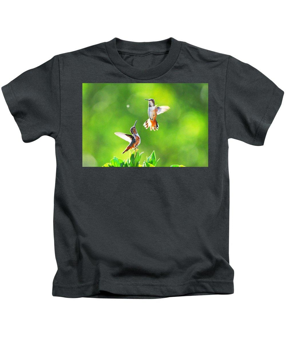 Hummingbirds Kids T-Shirt featuring the photograph Hummingbird Dance by Lynn Bauer