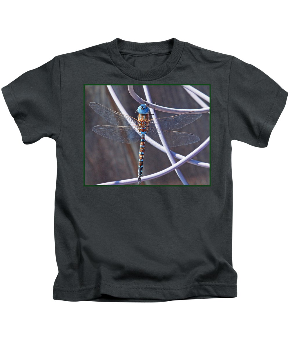 Dragonfly Kids T-Shirt featuring the photograph I Am Blue by Ru Tover