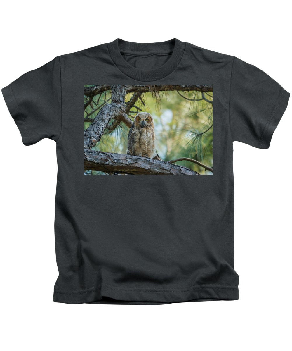 Florida Kids T-Shirt featuring the photograph Immature Great Horned Owl by Jane Luxton