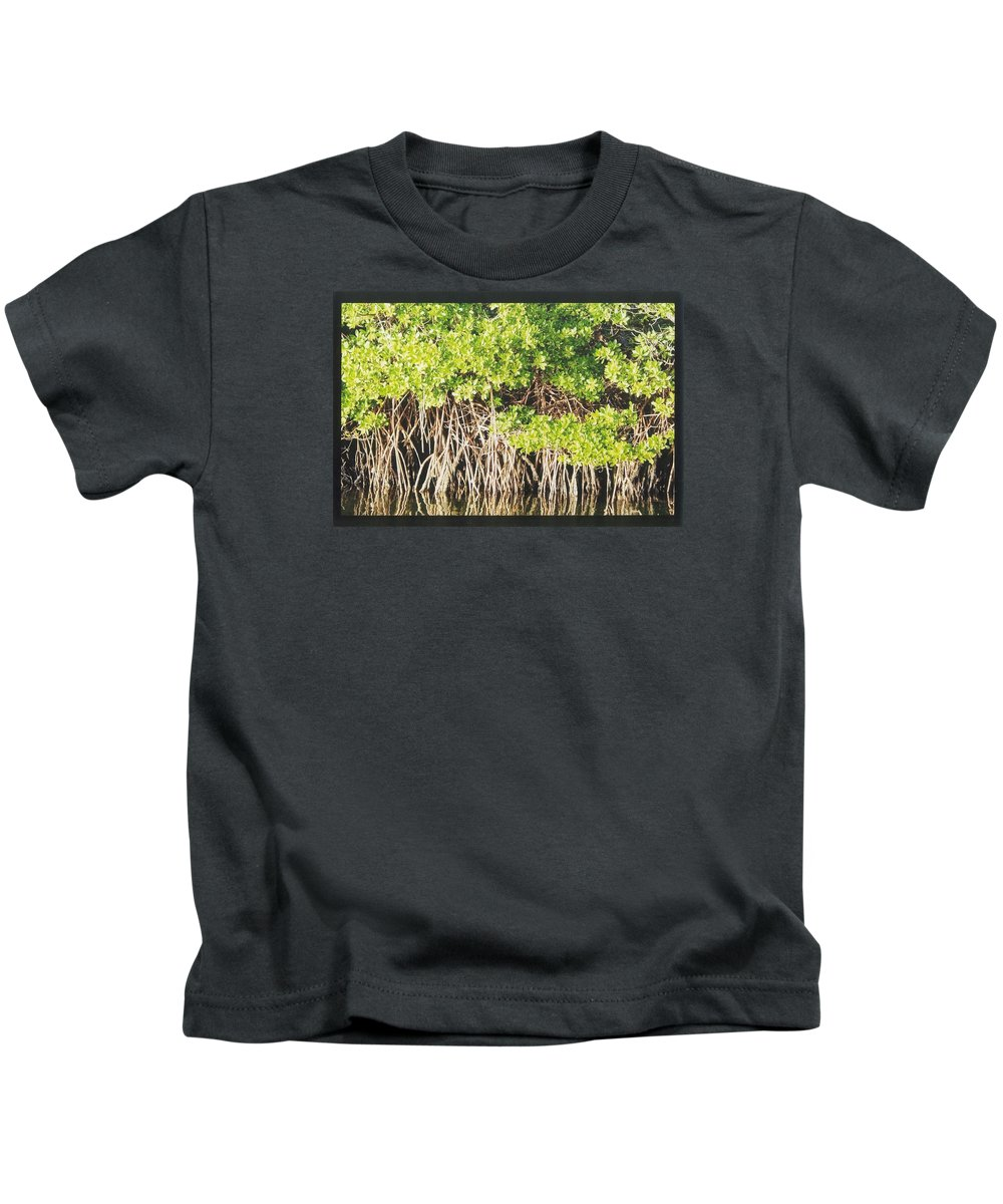 Mangrove Kids T-Shirt featuring the photograph In The Water by Robert Nickologianis