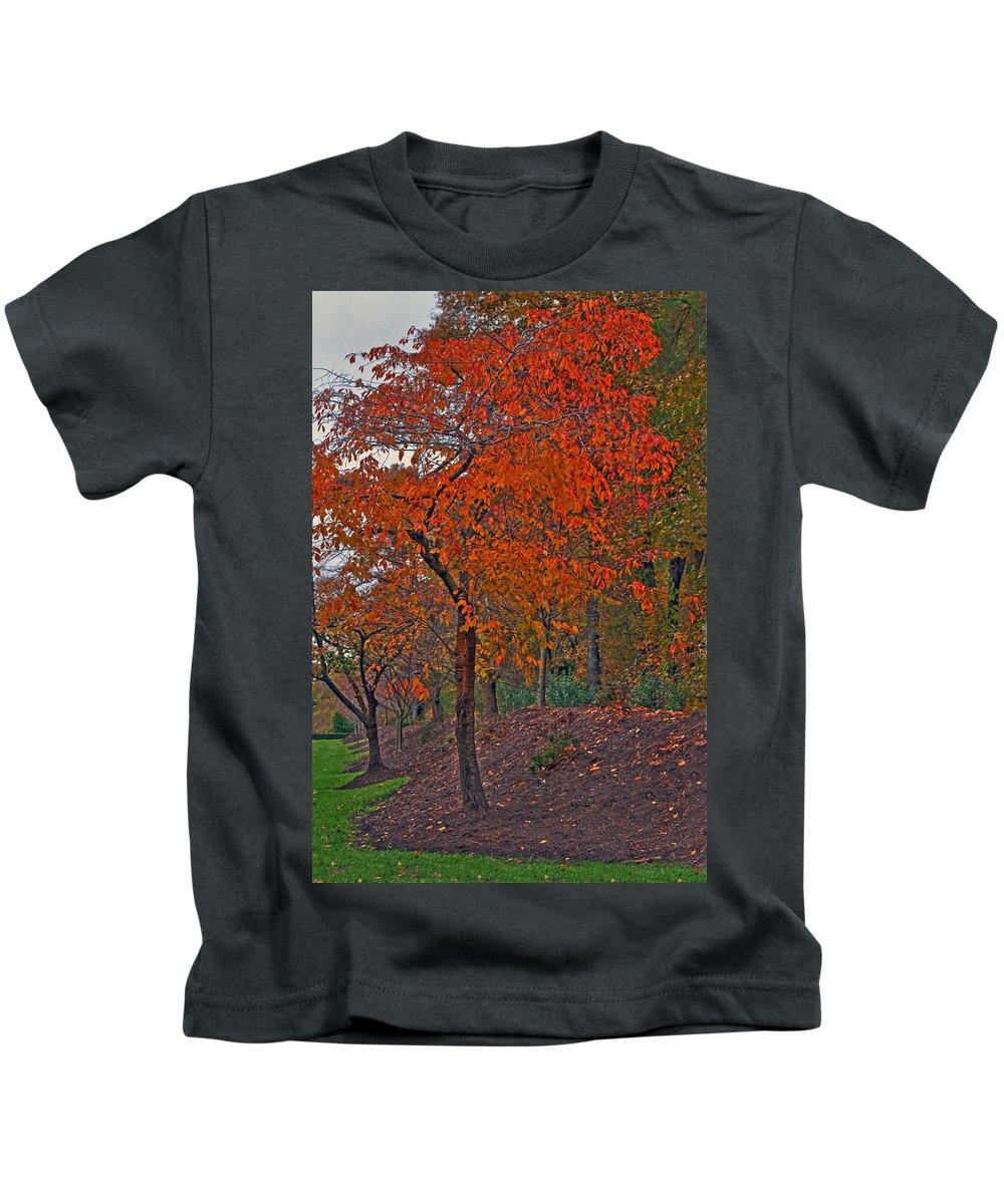 Japanese Cherry Tree Kids T-Shirt featuring the photograph Japanese Cherry Tree by Jerry Gammon