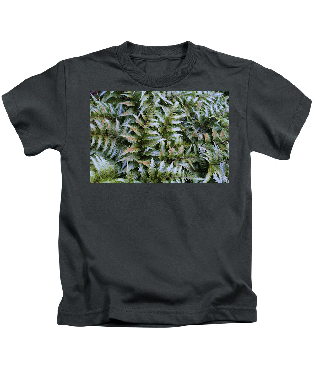 Ferns Kids T-Shirt featuring the photograph Japanese Ferns by Kathryn Meyer