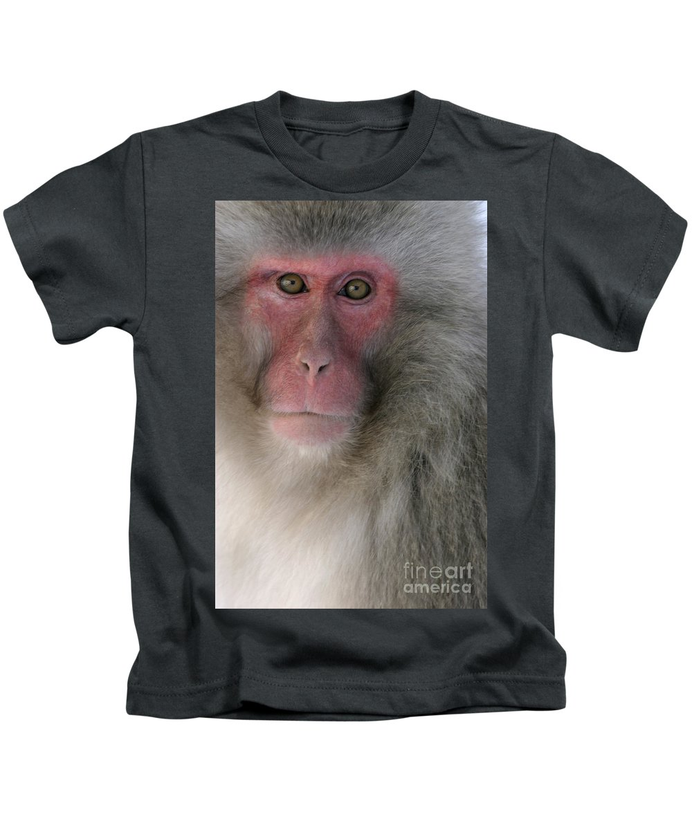 Japanese Macaque Kids T-Shirt featuring the photograph Japanese Macaque by Jean-Louis Klein and Marie-Luce Hubert