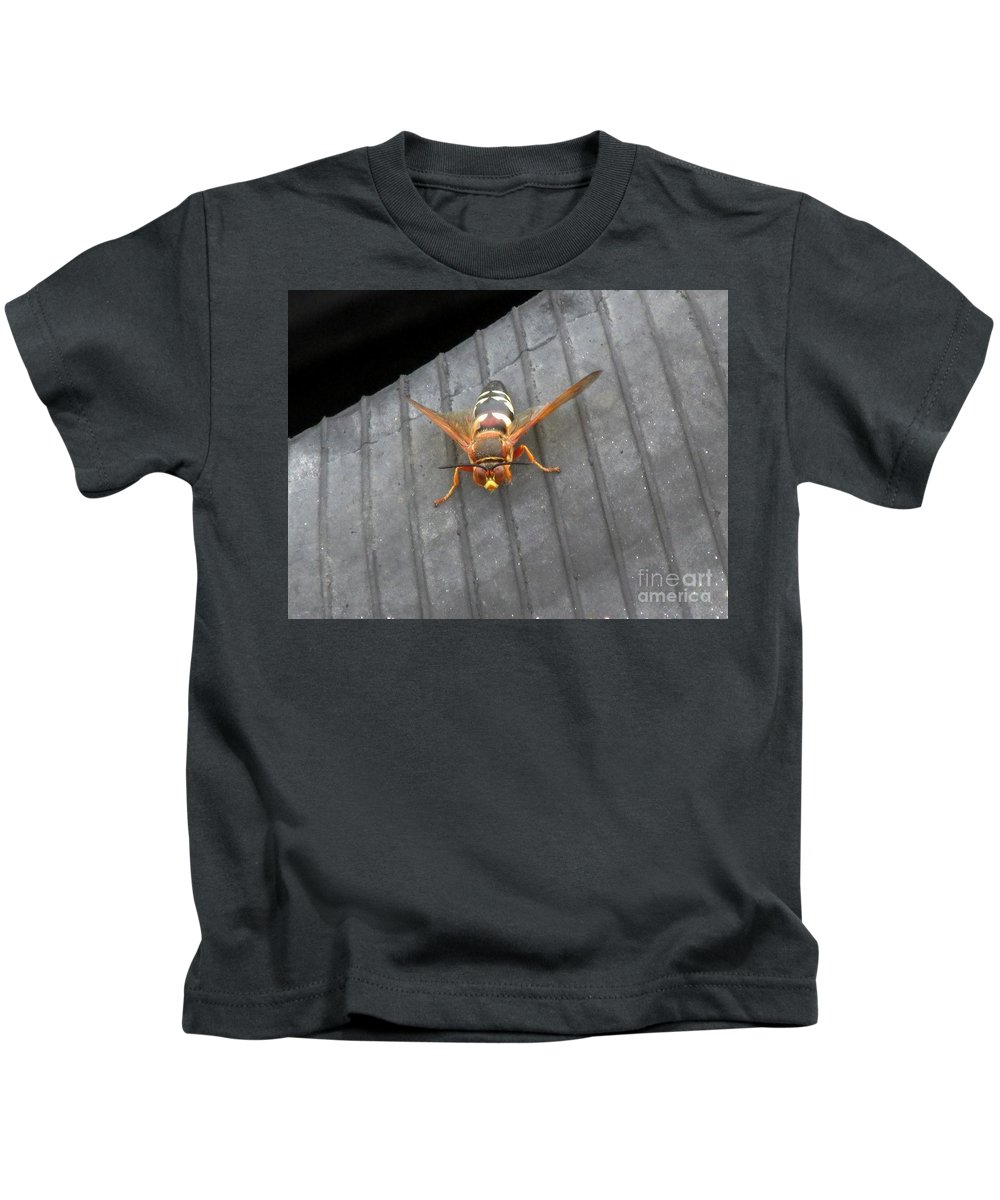 Cicada Killer Wasp Kids T-Shirt featuring the photograph Killer 1 by Don Baker