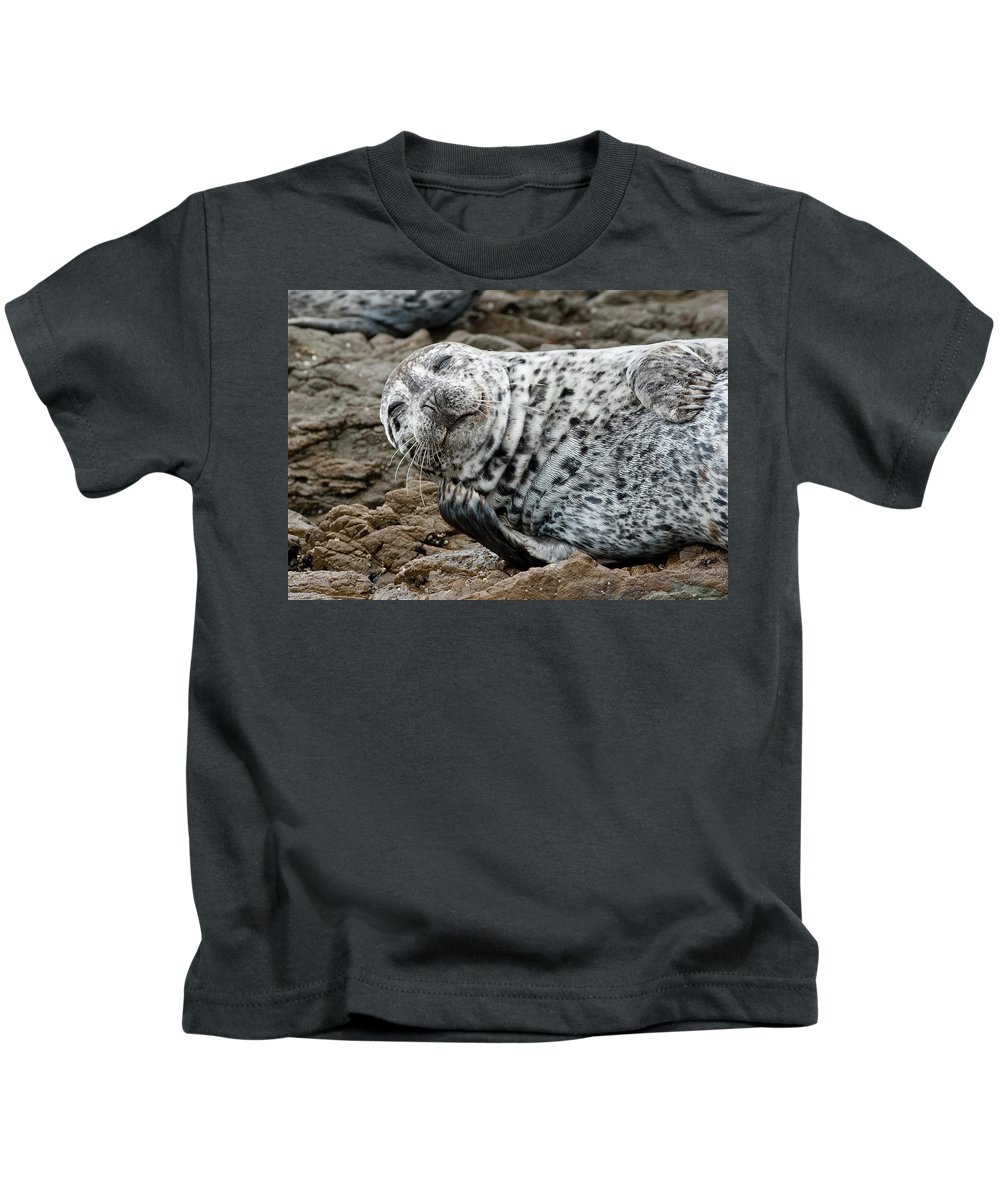 Seal Kids T-Shirt featuring the photograph Laughing Seal by Greg Nyquist